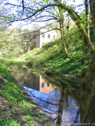 Reflection near Baker's Mill, Chalford