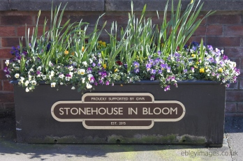 Trough outside Stonehouse Town Hall